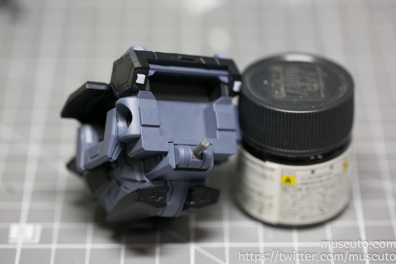 IMGS9355.jpg